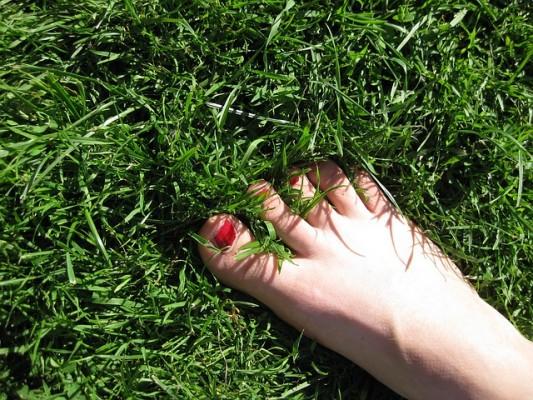 foot-5033_640